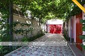 Во дворе - Гостевой дом У Вальдемара - Береговое Феодосия (Крым)